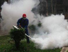 住宅小区灭蚊除蟑