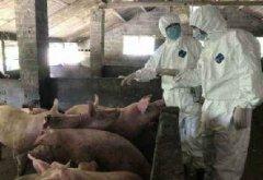 农牧养殖场有害生物防制/除四害